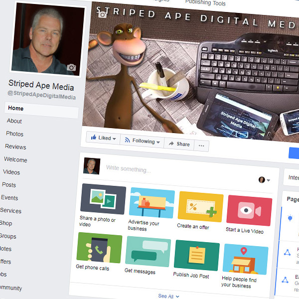 Making the Facebook Timeline Work for You by Striped Ape Digital Media